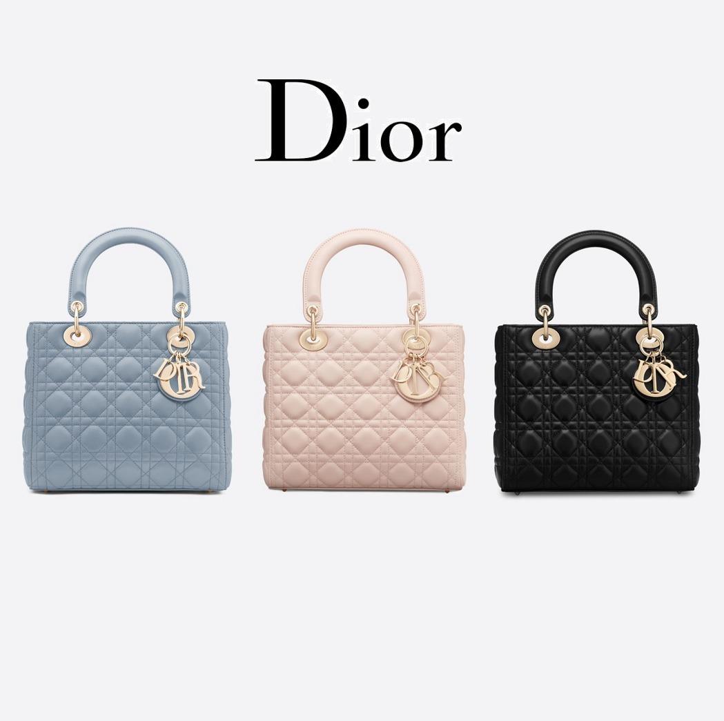 Bolsas-Dior